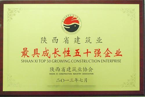 最具成长性五十强企业